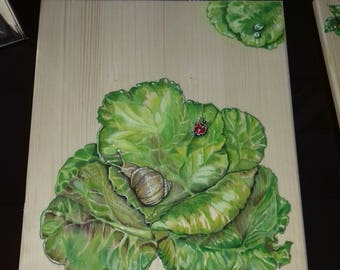 Lettuce with snail and ladybird