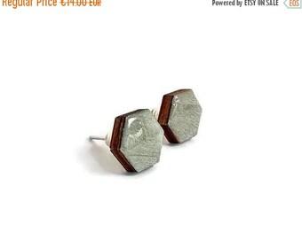 20% OFF SUMMER SALE Hexagon stud earrings, hexagon earrings, wood stud earrings, handpainted earring, geometric stud earring, wood jewelry,