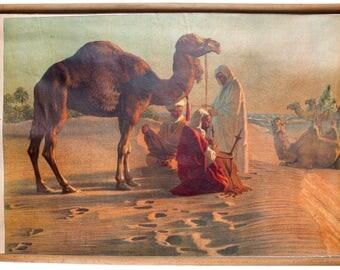 In the desert, educational chart , 1918