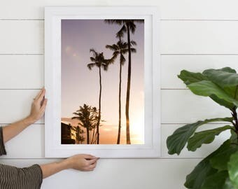 Sunset Palm Tree Photo Digital Download