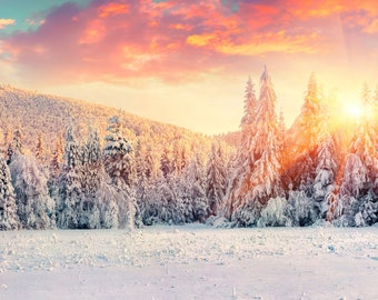 Winter Sunrise Photography Backdrop (HDY-GI-025)