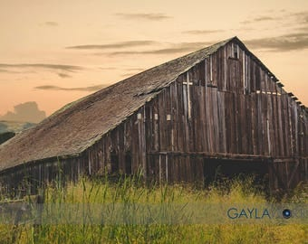 Tunitas Creek Barn - Fine Art Print - 8x10 11x16, Landscape Photograph