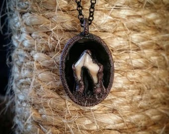 Coyote Tooth & Black Onyx Electroformed Necklace