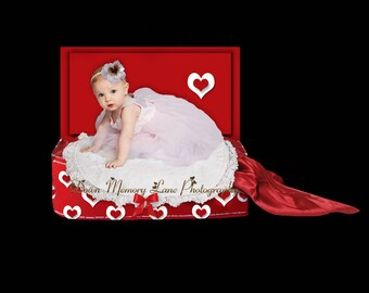 Digital Background, Sitter Background, Newborn Backdrop,  Valentine Background, Digital Luggage Prop, Boy or Girl Background