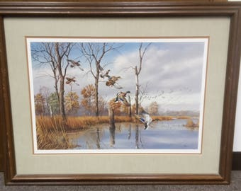 Sunlit Marsh - Mallards by David Maass in 1981, #208/950, signed by artist