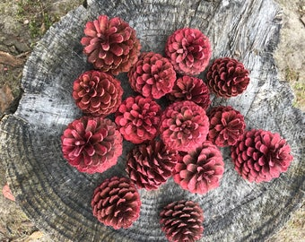 Pinecones with red glitter -15 total