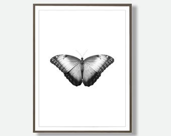 Black and White Butterfly, Butterfly Wall Art, Modern Printable, Butterflies, Instant Download Butterfly, Scandinavian Wall Art, Butterfly