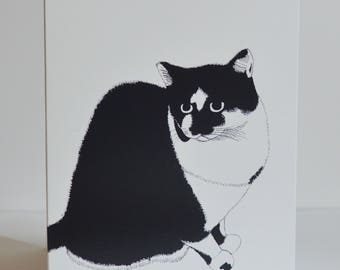 Black and White Cat Cards - Set of 5 - Blank - With White Envelopes
