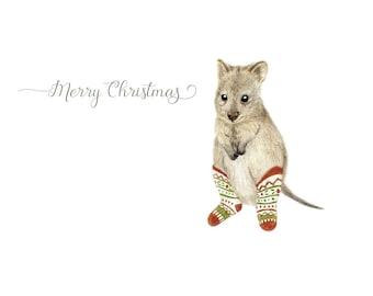 Quokka Christmas Card