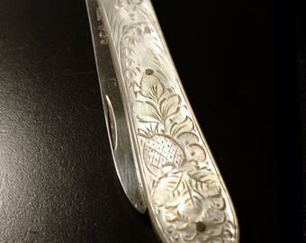 Fine antique sterling silver and mother of pearl fruit knife, heavily detailed, fruit and foliate, sterling silver blade, fully hallmarked