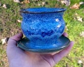 Mini Planter in Vivid Blu...