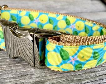 """Fresh Lemons 1"""" Dog Collar, Yellow Dog Collar Medium to Large Breed Dogs Nylon Webbing Collar"""