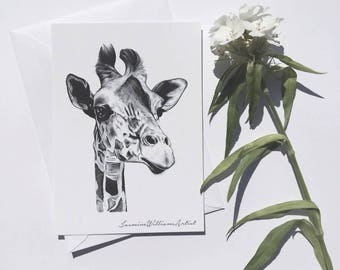 Realistic giraffe drawing, giraffe print, giraffe post card, send direct, black and white giraffe, black and white prints
