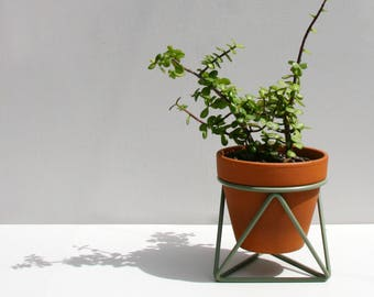 Mini Tri Plant Stand in Eucalyptus