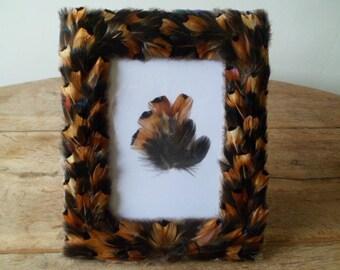Pheasant feathers photo frame