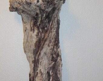 Wall piece, bark