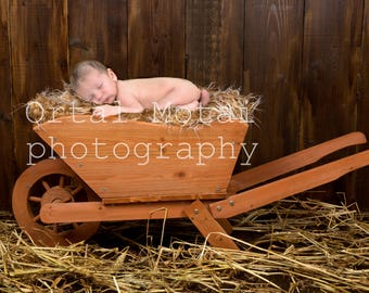 digital newborn backdrop, newborn photography prop, newborn prop,newborn digital backdrop, Digital download, newborn bed, newborn wood bed