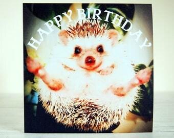Hedgehog card, Funny Birthday card, Hedgehog gifts, Hedgehog print, Hedgehog art, Hedgehog craft, Hedgehog photos, For hedgehog lover, Happy