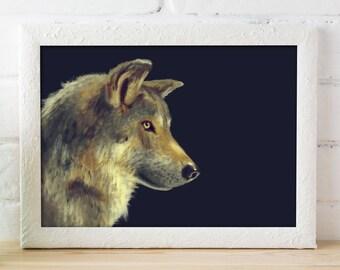 Game of Thrones Direwolf / Sansa Lady Direwolf / Arya Nymeria / wolf print / 11x14 / wolf animal art / nocturnal animal