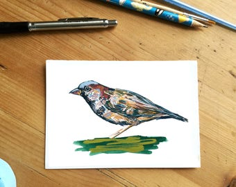 Male Sparrow // Bird Illustration // Art Print