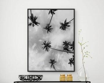 Sale!!! Palm Tree Print, Black and White Palm, Tropical Decor, Palm Tree Art, Palm Tree Photo, Tropical Wall Art, California Print