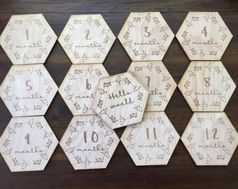 Whispy- Gon Baby Monthly Milestone Plaques