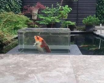 Transparant drijvend koi vissen vijver aquaruim (seekoi-de luxe)