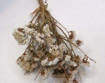 Dried Statice White bouquet/Sea Lavender Bunch/Flower bunch/Dried Flowers/Dried floral arrangement/natural dried plant/Floral bouquet