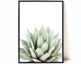 Contemporary succulent wall art print, printable poster, agave wall art, cactus wall art, succulent wall decor, plant printable poster,