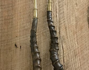 Set of Antelope Horns with Brass Mounts
