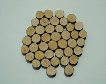 "40 pcs, Natural Wood Slice ""1"", Lilac tree, small tree slices, disks, circles wood, slices, craft, supplies, rustic"