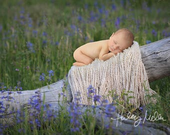 Newborn Baby Digital Backdrop/ Digital Background/Purple Flowers on Log