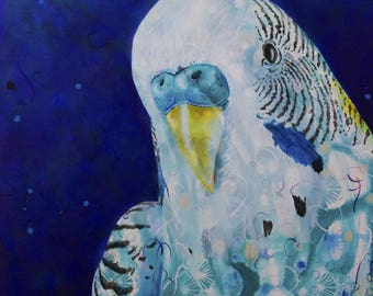 Budgie Love - Michelle Gilks bird blue wildlife pet art print