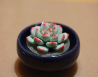 succulents - handmade with polymer clay
