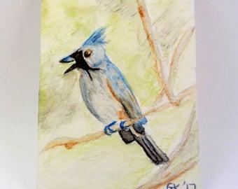 Tufted Titmouse Watercolor Painting, Original Painting, A7 US Bird Art, Bird Watching