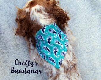 Paisley Pool Dog Collar Bandana