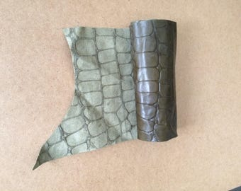 Green Crocodile stamped leather