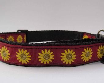 Sunny sunflower dog collar