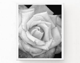 Black and White Rose Print, Digital Download, Rose Print, Rose Poster, Black and White Print, Modern Decor, Printable Wall Art, Rose Picture