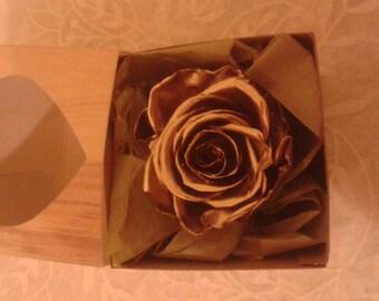 ROSE - Golden Eternal Rose in Gift Box
