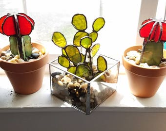 Green Stained Glass Cactus - desktop