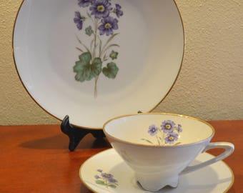 Rare Bareuther Waldsassen Bavaria Germany Tea Cup Saucer Trio Violets