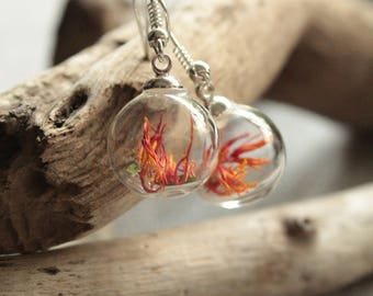 Earrings, Globe/ball glass, dried, orange-red flowers