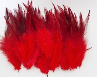 set of 10 red feathers mixed 10-15cm