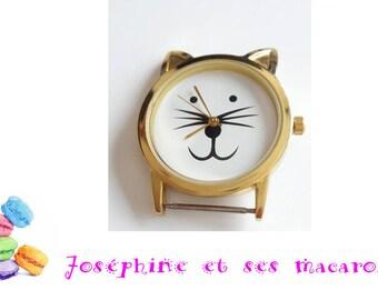 1 Golden Cat shows 4 cm