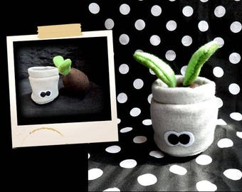 Plush in the shape of small plant that grows APLUCHES