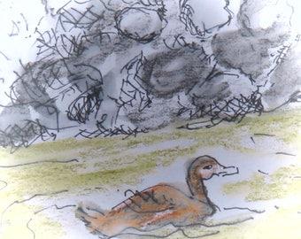 Duck at Lake Placid