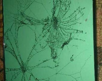 White on mint green preserved spiderweb