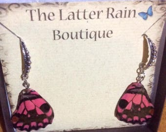 Authentic Butterfly Wing Earrings
