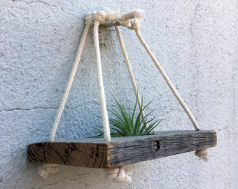 Rustic Air Plant Hanger (single with rope hanging ring)
